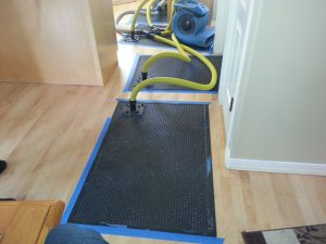 Water Damage Blackfoot