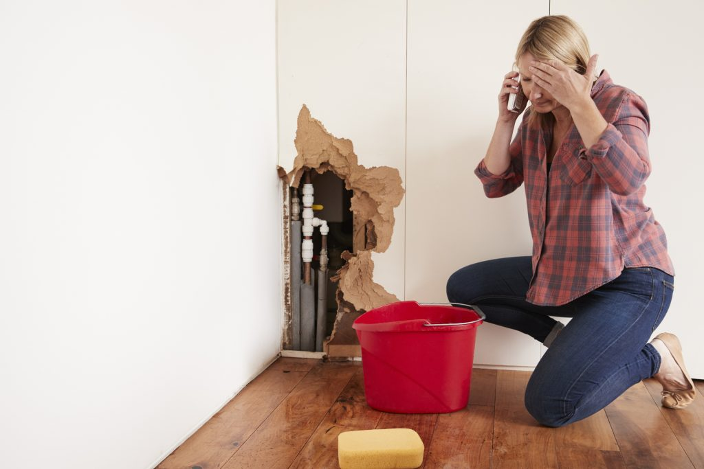 water damage company idaho falls, water damage idaho falls, water damage repair idaho falls