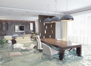 water damage restoration idaho falls, water damage company idaho halls, water damage idaho falls